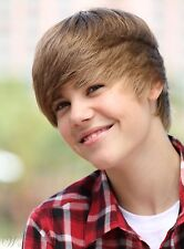 Custom Justin Bieber's Cool Top Quality Short Straight Brown Wig 8 Inches