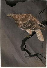 OHARA KOSON, 'GOSHAWK', vintage color woodblock, c. 1930