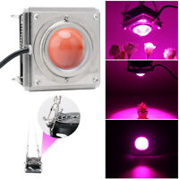 600W COB LED Grow Light Full Spectrum Growth Lamp W/Cooling Fan Hydroponic Plant