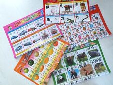 5 LEARN CHINESE LANGUAGE MANDARIN PRONUNCIATION WALL CHART POSTER BOOK W ENGLISH