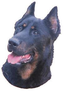 2 Aufkleber Hunde Berger De Beauce / Beauceron [o214]