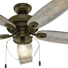 Hunter Fan 52 inch Regal Bronze Outdoor Ceiling Fan with Globe Light Kit