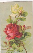 C. Klein, Flowers, Roses, no. 1246 Art Postcard, B485
