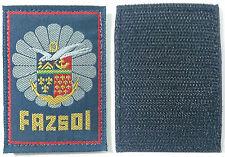 FAZSOI Force Armée Zone Sud Océan Indien DICOM DA181 COMBdD 2°RPIMA DLEM LÉGION