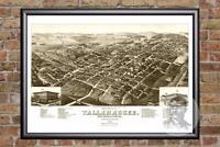 Vintage Tallahassee, FL Map 1885 - Historic Florida Art - Victorian Industrial