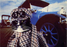 Cat Empire 'Road Mog' Black Cat dressed Vintage Car Art by Weigall Postcard 4x6