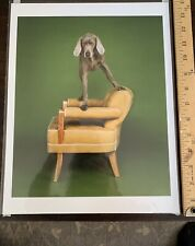 William Wegman Weimaraner Photograph - Limited