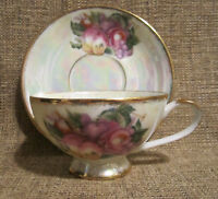 Kelvin Fine China Tea Cup and Saucer Set Hand Painted Fruit Gold Trim L-923