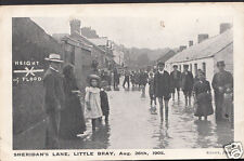 Ireland Postcard - Sheridan's Lane, Little Bray Floods, Aug 26th 1905 - A5374