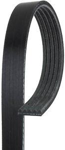 Serpentine Belt-Micro-V AT Premium OE V-Ribbed Belt CARQUEST by GATES K050368