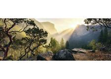 Ravensburger Yosemite Park No 10 Edition 1000 piece Jigsaw Puzzle