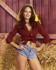 The Dukes Of Hazzard TV Show Catherine Bach Daisy Duke 8x10 Photo