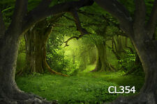 20X10FT Vinyl Studio Backdrop-Forest Green Scenic Photography Background CL354