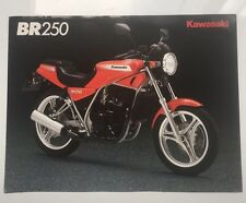 Kawasaki BR250, 2 page brochure,