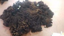 0.6kg Raw Sheeps Fleece Belwin Spinning Weaving Stuffing Insulation 104