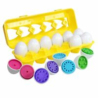 Count & Match Egg Set - Toddler Toys - Preschool Educational Color & Number Reco