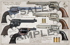 Colt SAA . 45 Model of 1873 Variants Poster 11 x 17