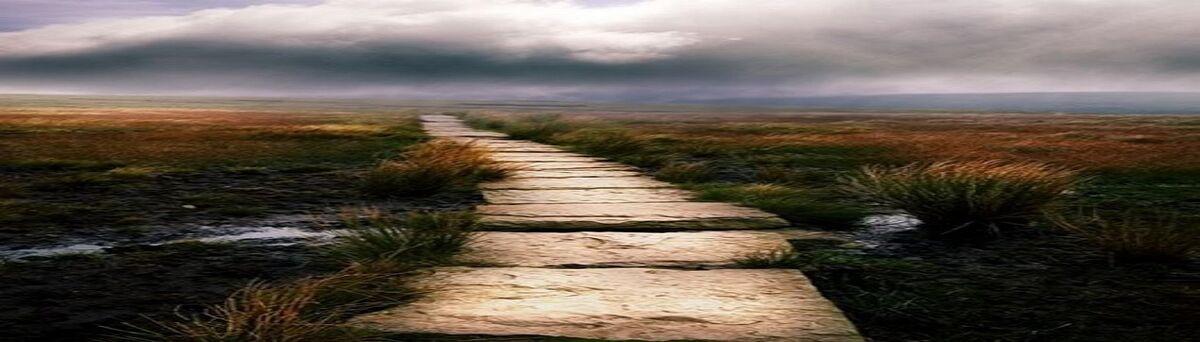 Narrow Path Music