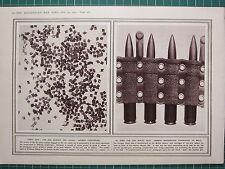 1915 WWI WW1 PRINT ~ KEPT DRY GERMAN GUNPOWDER ~ RIFLES GERMAN MACHINE-GUN BELT