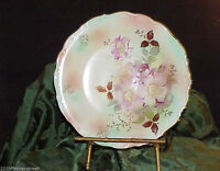 Vintage  Schumann Arzberg Germany ~ Bavaria Plate ~ 12 in  ~ #62 Wild Rose