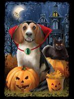 Halloween Shirt - Count Dogula - Black Cat - Jack O Lantern - CUTE! Sm - 5X