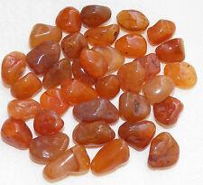 CARNELIAN AGATE Tumbled Stones Rock POWER STONE Healing MD Jewelry 1/2 lb BRAZIL