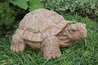 Steinfigur Schildkröte Tierfigur Dekofigur Gartenfigur Steinguss frostfest