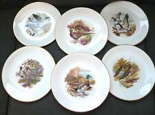 Weatherby Hanley Set of 6 Royal Falcon Ware Game Bird Plates, Vintage England