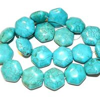NG1445 Teal Green Turquoise 20mm Flat Puffed Hexagon Magnesite Gemstone Bead 15""