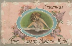 Greetings from Grand Meadow, Minnesota - posted litho
