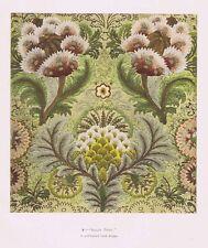 Diseño del bordado puerro escuela de 'Amapola indio' - Antiguo impresión c1900