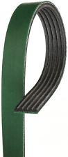Serpentine Belt-FleetRunner Heavy Duty Micro-V Belt GATES K050336HD