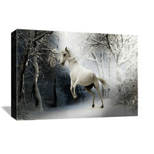 Decor Canvas 1 Panels   White Horse  Wall Art Canvas Prints No Frame