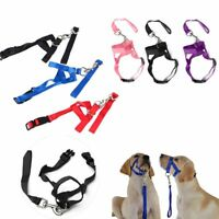 Training Puppy Head Collar Halter Dog Muzzle Strap Pet Mouth Traction Set