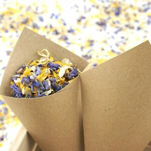 Handcrafted Recycled Kraft Brown Wedding Confetti Cones Sample, Sets of 10 - 100