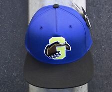 GRIZZLY GRIPTAPE X SUPPLY CO. VARSITY PAW MENS BLUE SNAPBACK HAT