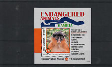 Gambia 2013 MNH Endangered Animals I 1v S/S Western Red Colobus Monkey Wildlife