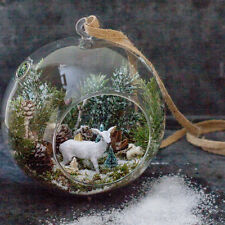 Hanging Globe Round Glass Terrarium Air Plant Candle Holder, Clear