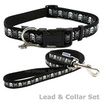 Ancol Indulgence Black Skull Adjustable Nylon Dog Puppy Lead Collar - Fast Del