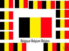 Assortiment lot de 25 autocollants Vinyle stickers drapeau Belgique-Belgium