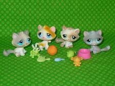 Littlest Pet Shop #53 #52 #197 #177 KITTENS CAT LOT w/Accessories Hasbro LPS