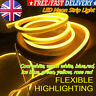 1-5m LED Strip Neon Flex Rope Light Waterproof DC 12V Flexible Outdoor Lighting*