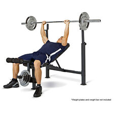 Competitor Olympic Bench | CB-729 Chest Squat Leg Full Weight Exercise Workout