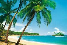 Fototapete ILE TROPICALE 366x254 Strand Palmen Karibik Insel Tropen Meer Sonne