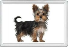 YORKSHIRE TERRIER - JUMBO FRIDGE MAGNET- DOG PUP PUPS PUPPIES DOGS CANINE KENNEL
