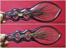 1 head  9 Tails Gecko Lizard  Thai Buddha Gambler Amulet Lucky&Wealth &Love#P17