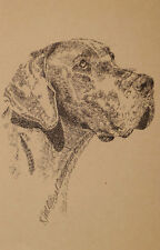 Great Dane Dog Art Kline Print #72 Drawing From Words Your dogs name added free.