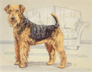 AIREDALE TERRIER DOG FINE ART LIMITED EDITION PRINT - with mount ready to frame