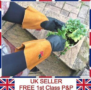 LTG Ladies Garden Gardening Leather Long Gloves Thorn Resistance Work Safety DIY