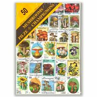 50 Different Mushrooms Used Stamps Thematic Window Display Packet